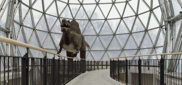 Dinosaur Park, Dresden