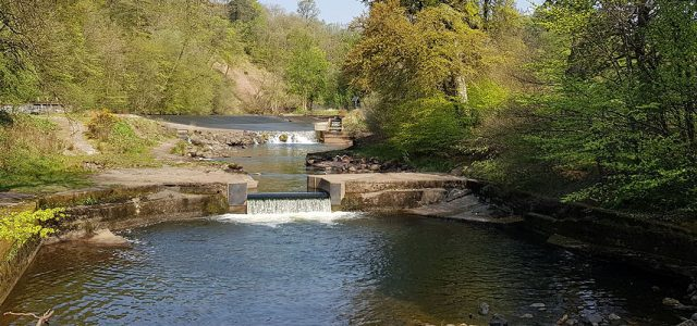 Addison Conservation + Design – Conservation of Catrine Weir